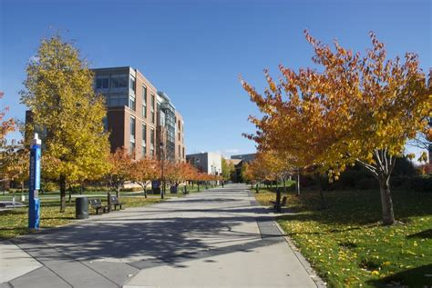 WSU College of Nursing Selected as #3 of 50 Most Beautiful