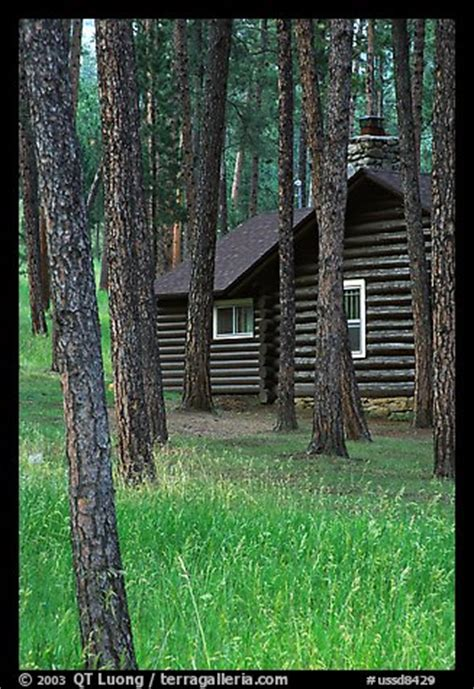 Picture/Photo: Cabins in Custer State Park