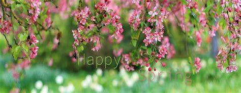 Spring Status and Short Spring Quotes Captions