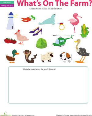 Sorting Activity: What Doesn't Belong? | Worksheet